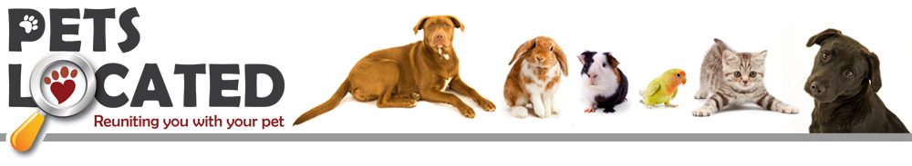 Pets Located logo image