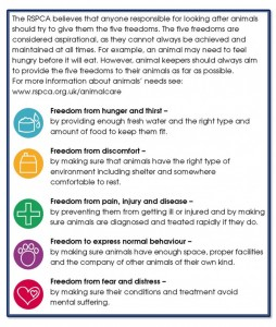 RSPCA - 5 Freedoms